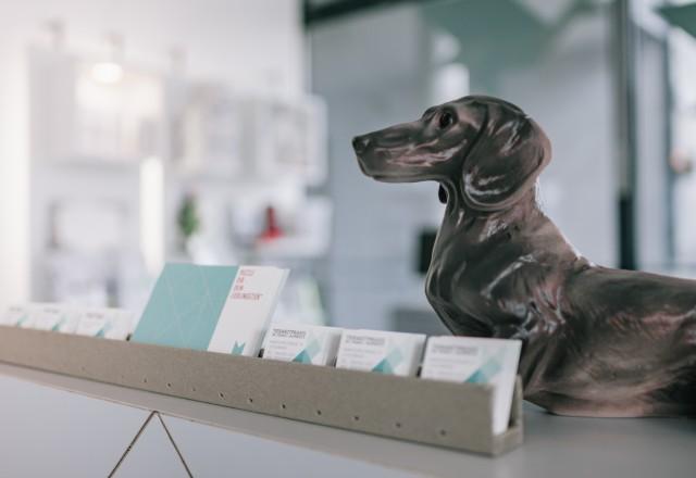 Tierarzt Berlin Tempelhof Rezeption